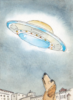Dog and UFO